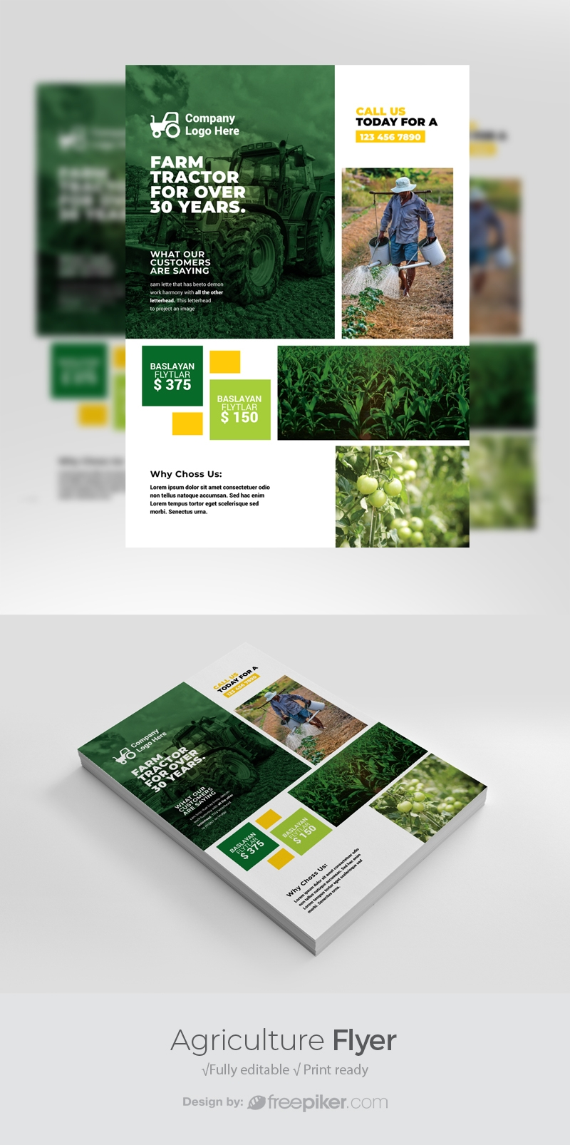 Agriculture Flyer Templates