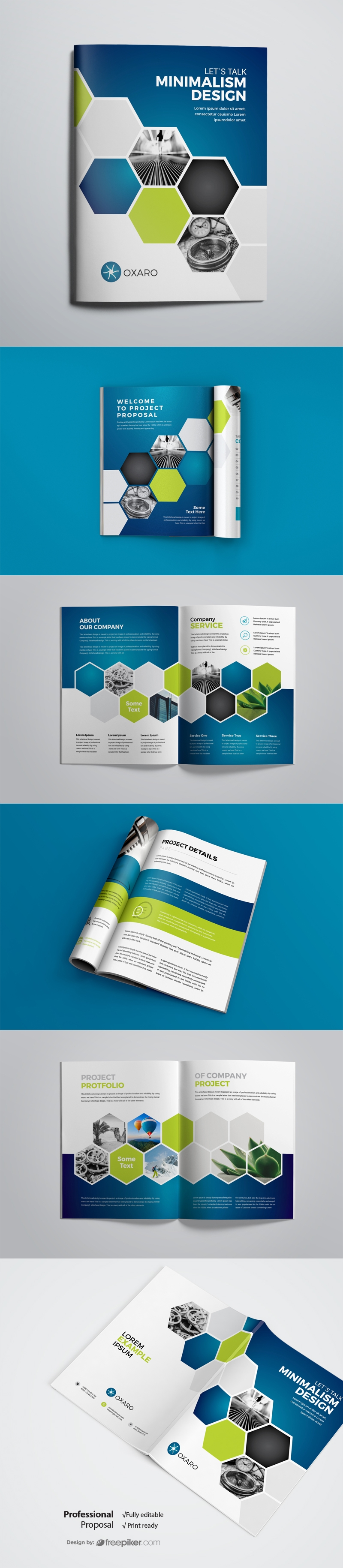 Blue Accent Business Project Proposal With Hexagon
