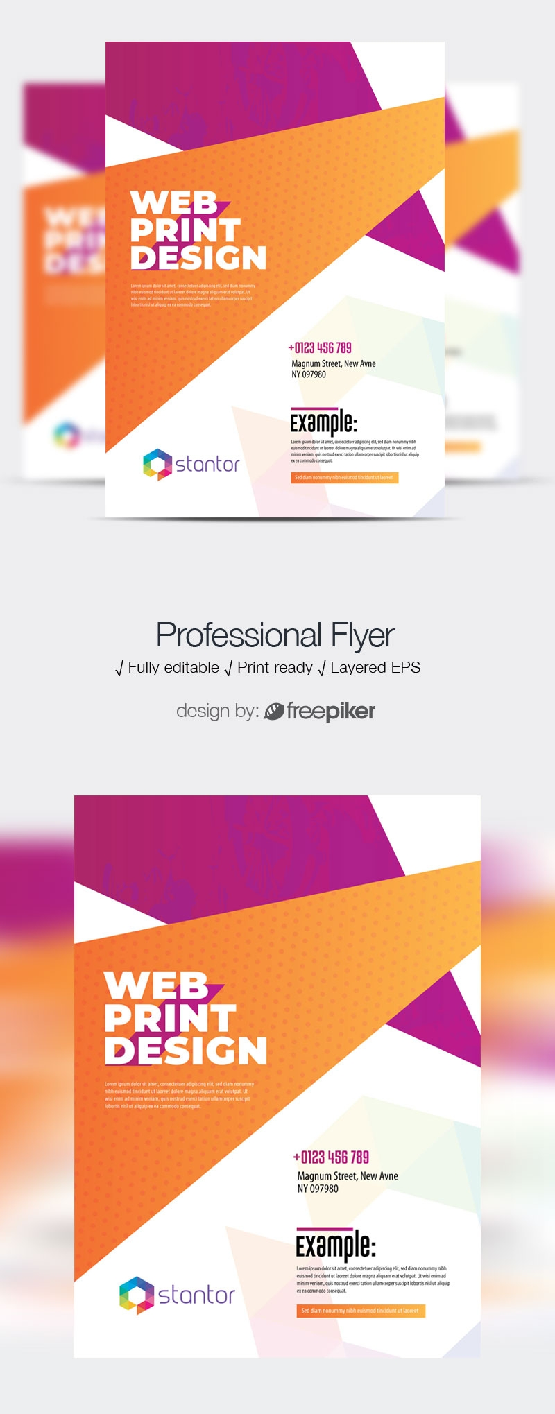 Colourful Abstract Creative  Flyer