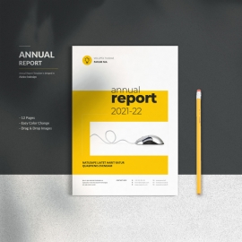 Annual Report Brochures