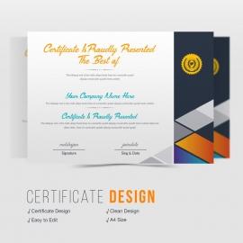 Axpro Brand Certificate Design