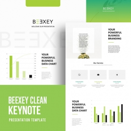 Beexey Clean Keynote Template