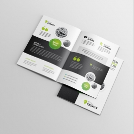 Black Accent Business BiFold Brochure With Cricle