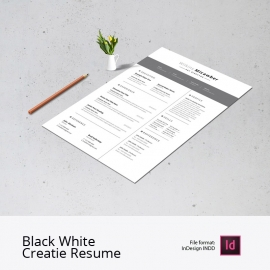 Black White Creatie Resume And CV Design Layout