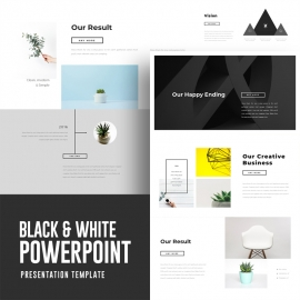 Black & White Powerpoint Presentation
