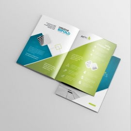 Blue And Green Accent Business BiFold Brochure