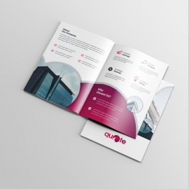 Business BiFold Brochure Red Cricle Accent