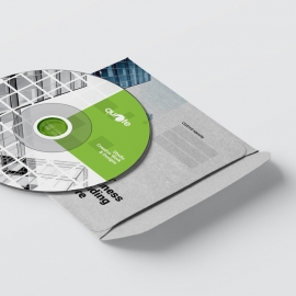 Business CD Pack With Green Boxs