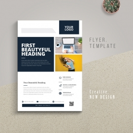 Business Flyer With Boxs