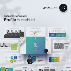 Business Profile Powerpoint | ProBiz 1.0