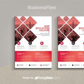 Business Red Flyer