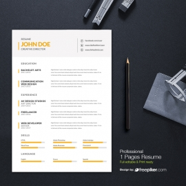 Business Resume Design