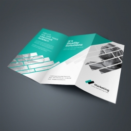 Business TriFold Brochure With Paste Accent