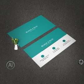 Clean Minimal Business Card Past Accent