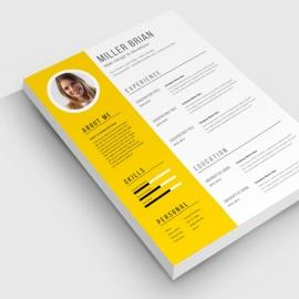 Clean Resume & CV