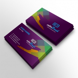ColorBrush Clean Business Card