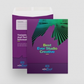 ColorBrush Clean Catalog Envelope
