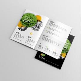 Colorful Business BiFold Brochure With Black Accent