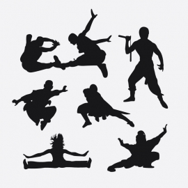 Combat Karate Illustration Vector