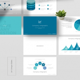 Company Info graphic PowerPoint Template