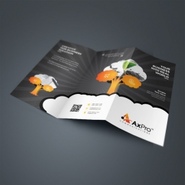 Corporate Black TriFold Brochure With Ornage Tree