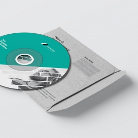 Corporate Business CD Pack With Paste Accent