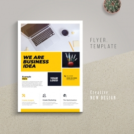 Corporate Business Flyer With Boxs