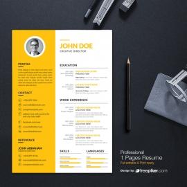 Corporate & Clean Resume Design