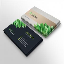 Creative Clean Corporate Business Card