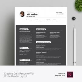 Creative Dark Resume With White Header Layout