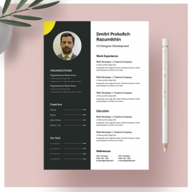 CV Resume layout