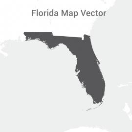 Florida Map Dark Vector Design