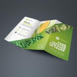 Garden Farm agriculture TriFold Brochure