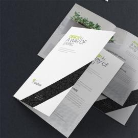 Minimal Creative Bifold Brochure