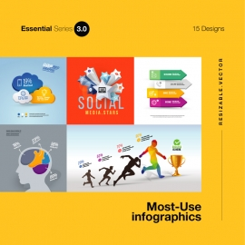Most Use Essential Infographics Set IV