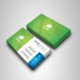 Multipurpose Business Card With Green Accent