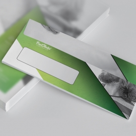 Multipurpose DL Envelope Commercial With Green Accent