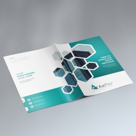 Paste Accent Presentation Folder With Hexagon