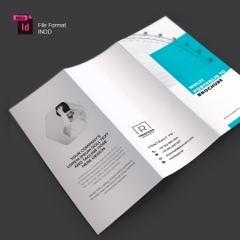 Paste Accent TriFold Brochure With Boxs