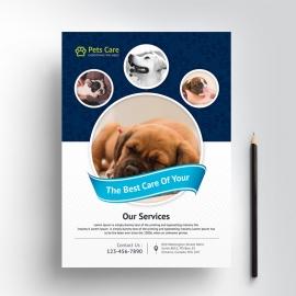 Pets Care Clean Flyer Design