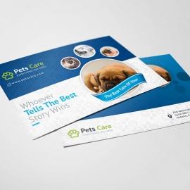 Pets Care Clean Postcard