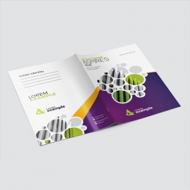 Portfolio Business Presentation Folder With Cricle