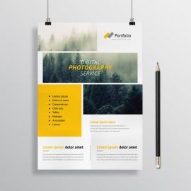 Portfolio Flyer