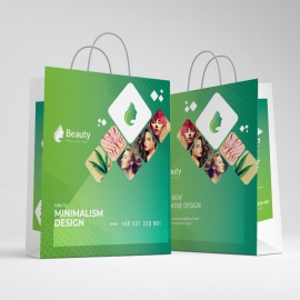 Professional Business Shopping Bag