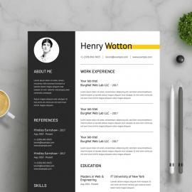 Professional  CV / Resume Template