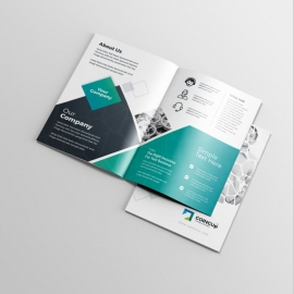 Professional Services BiFold Brochure With Black & Blue