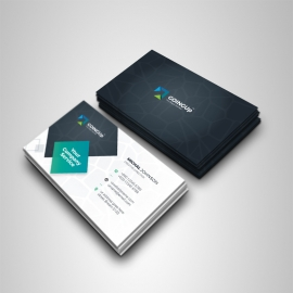 Professional Services Business Card With Black Accent
