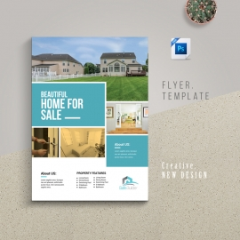Real Estate Flyer With Boxs