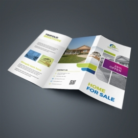 Real Estate TriFold Brochure With Boxs