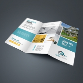 Real Estate TriFold Brochure With Paste Boxs